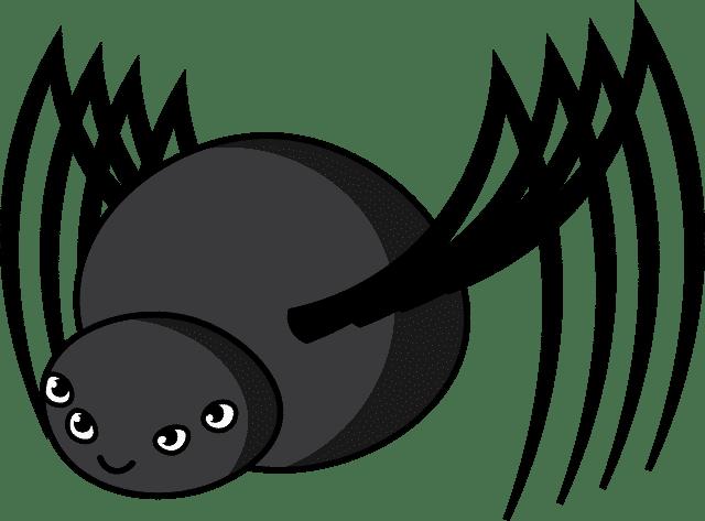 le-spider-de-google